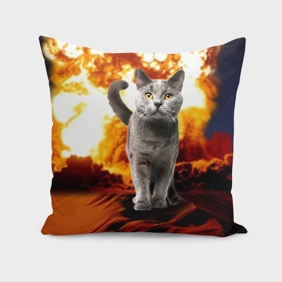 ALL OVER Cat Explosion Action movie Crazy Art Galaxy