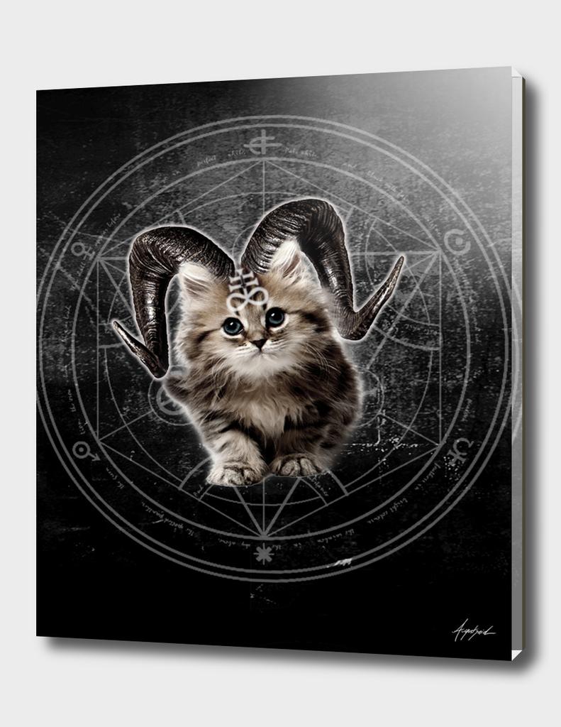 ALL OVER Cat Kitty Black Dark Satanic Satan 666 Hell