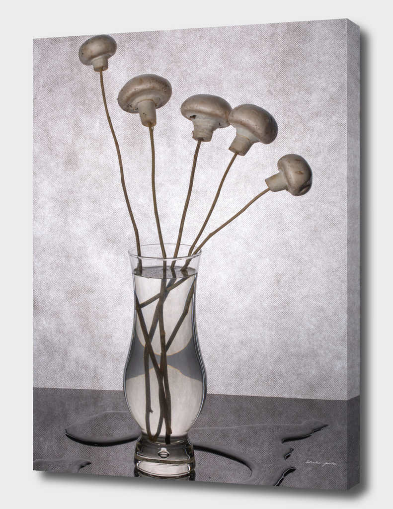 Bouquet of mushrooms