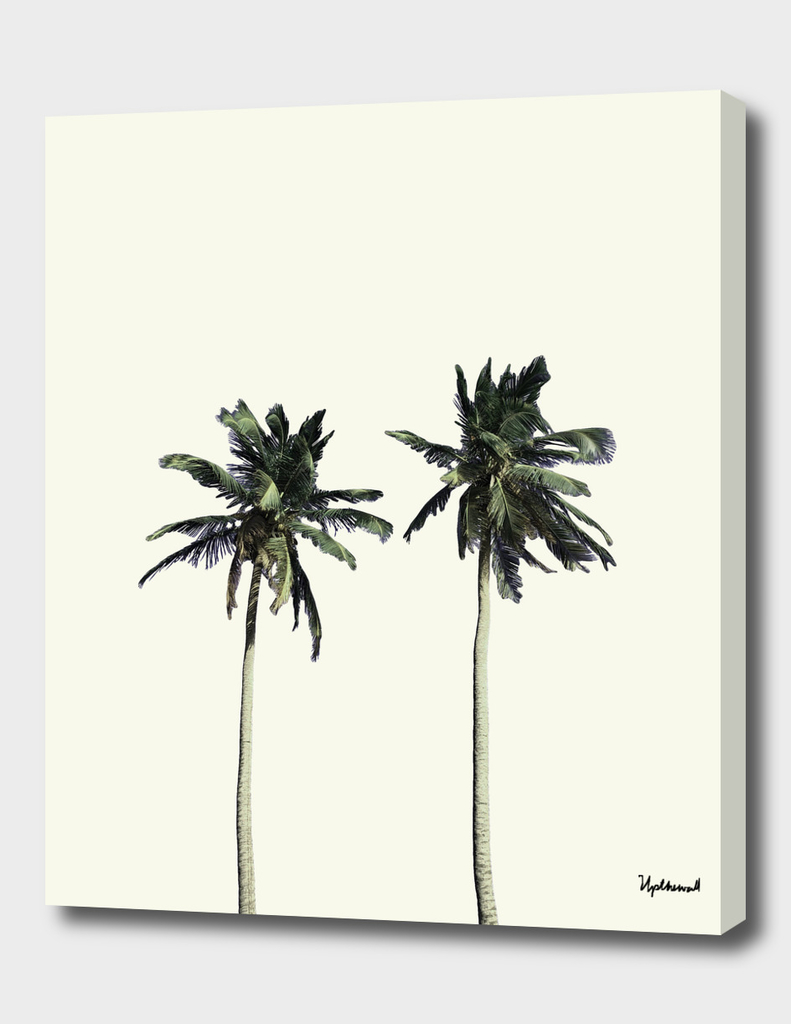 Twin Palms (soft white)