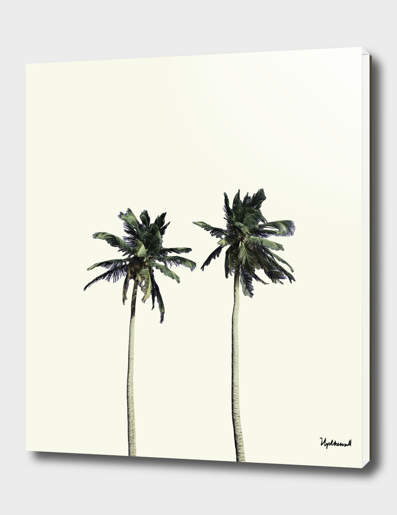 Twin Palms (soft white)