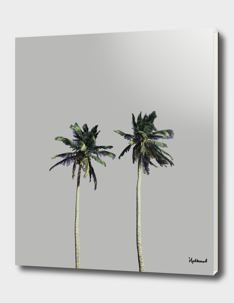 Twin Palms (light grey)