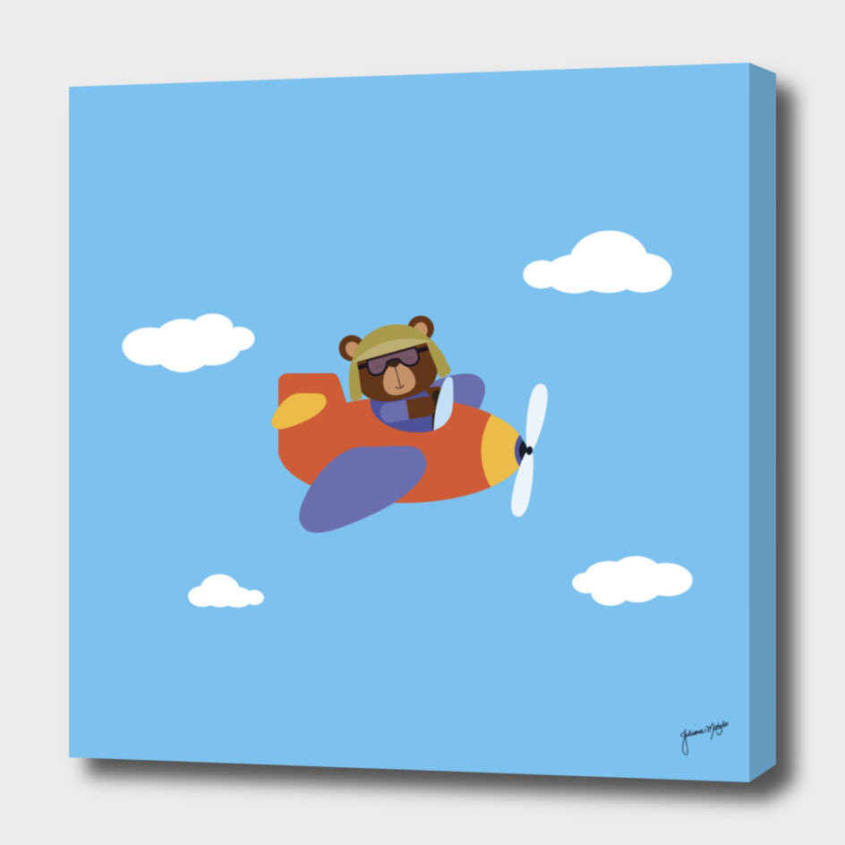 Bear on Airplane