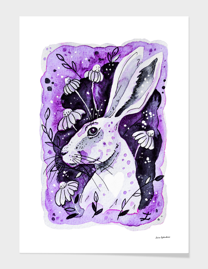 Purple Hare
