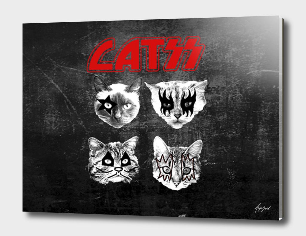 kiss catsKISS cats kitty pussy