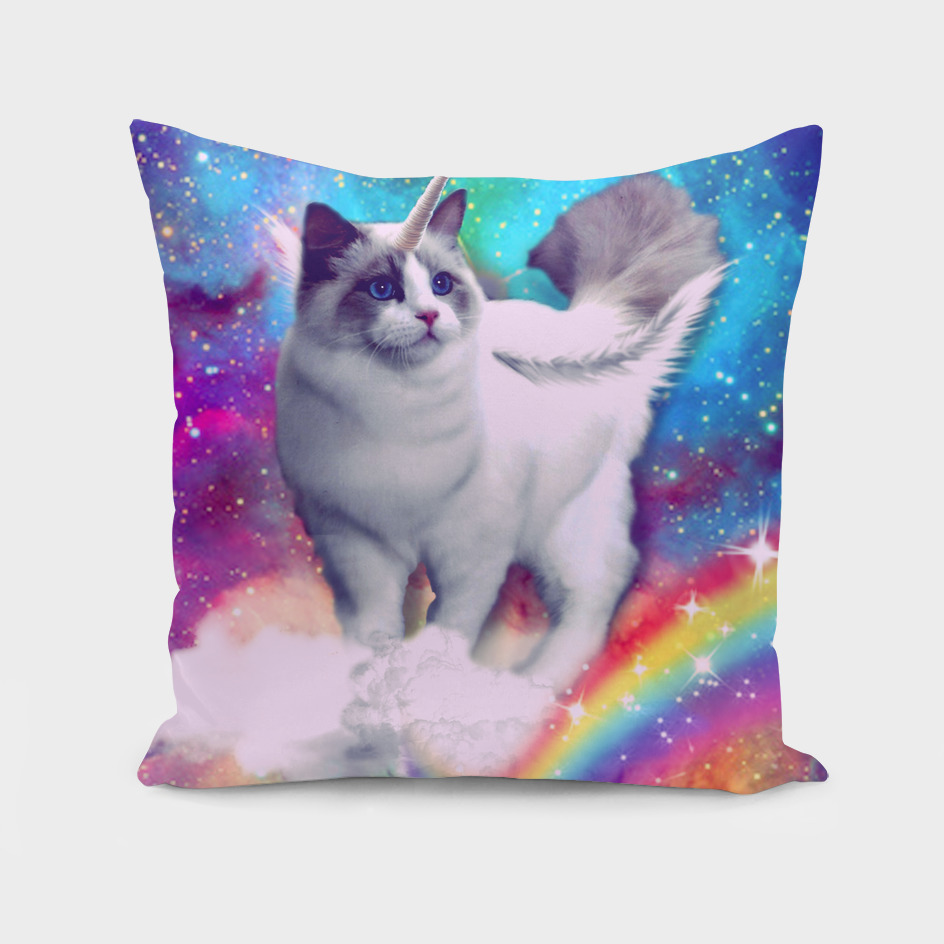 unicorn cat spece crazy cat rainow