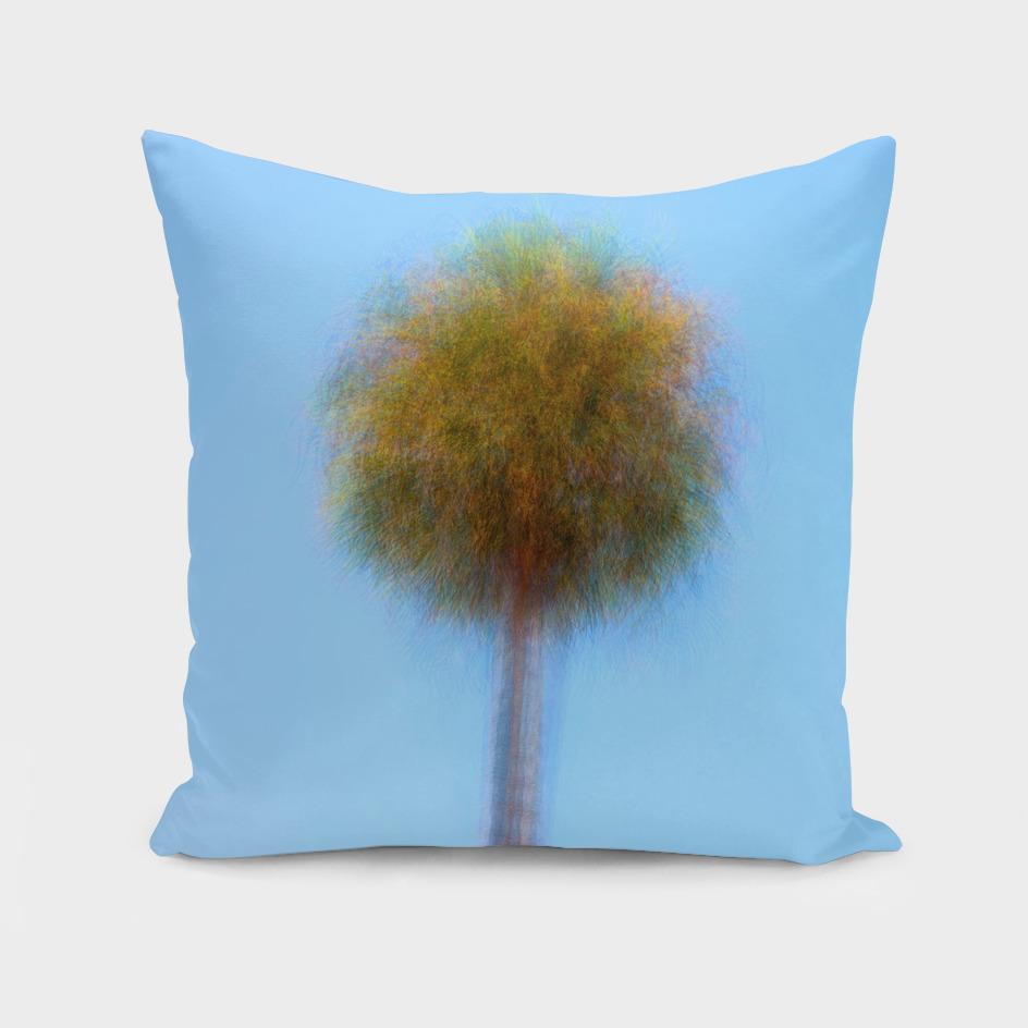 I Am A Palm Tree