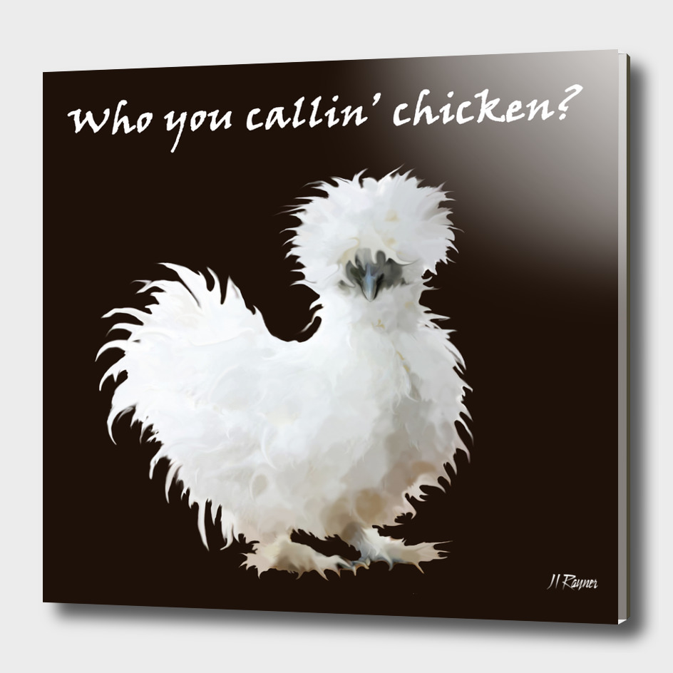 Silkie Chicken Typography