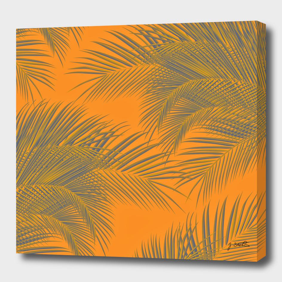 Palm Trees, summer beach