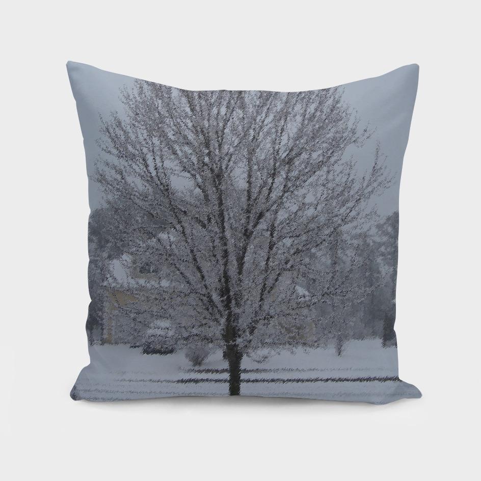Trees of Winter