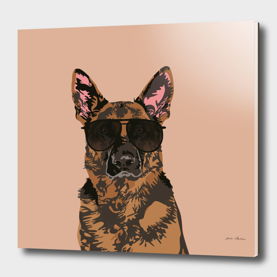 Cool German Shepherd for German Shepherd Lovers