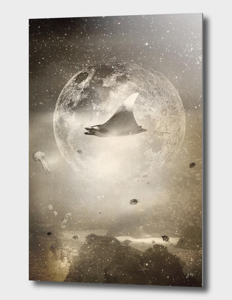 Space Collection : The Aquarium