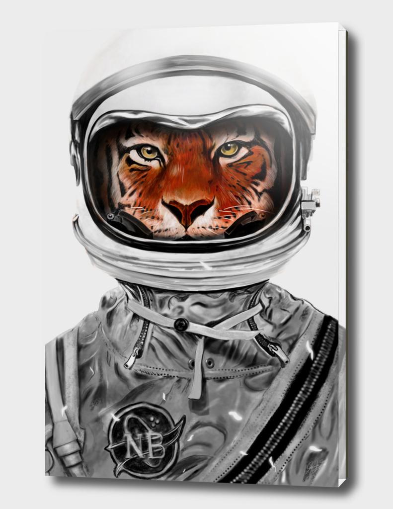 Astro Tiger