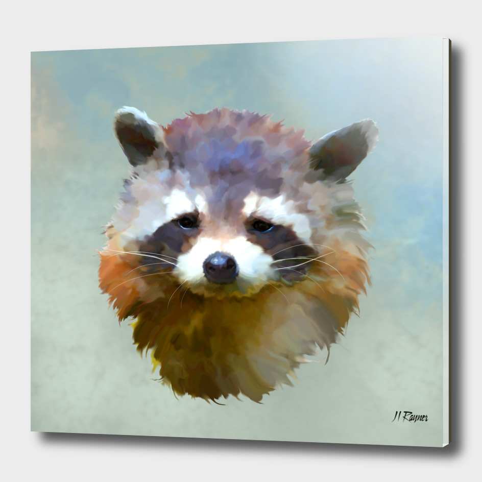 Colourful Raccoon