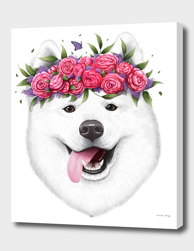 Samoyed with flowers
