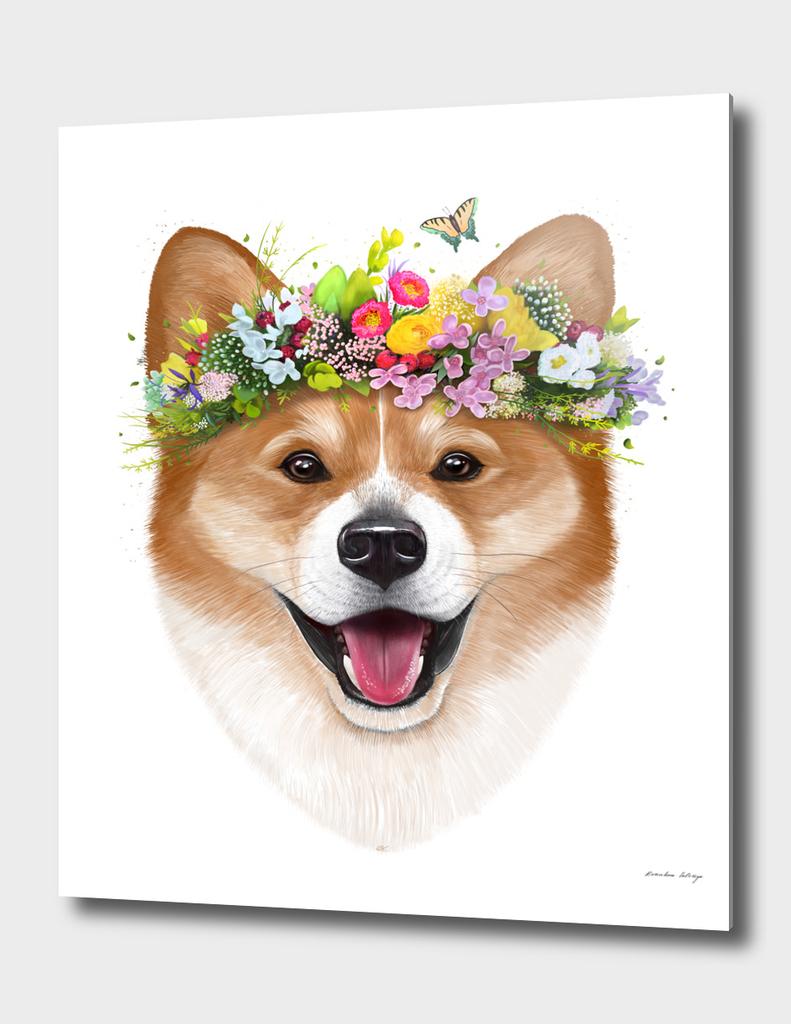 Korgi with flowers