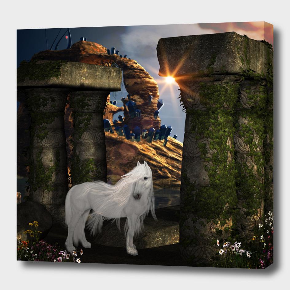Wonderful white unicorn in the night