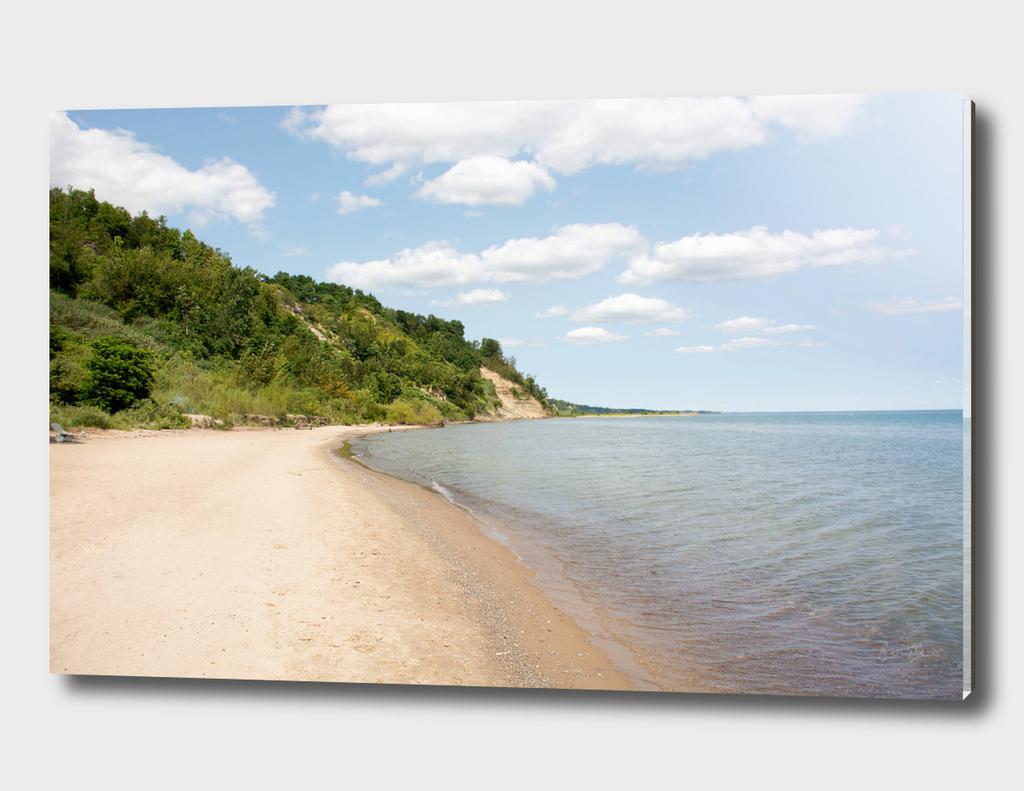 AFE Bluffer's Beach