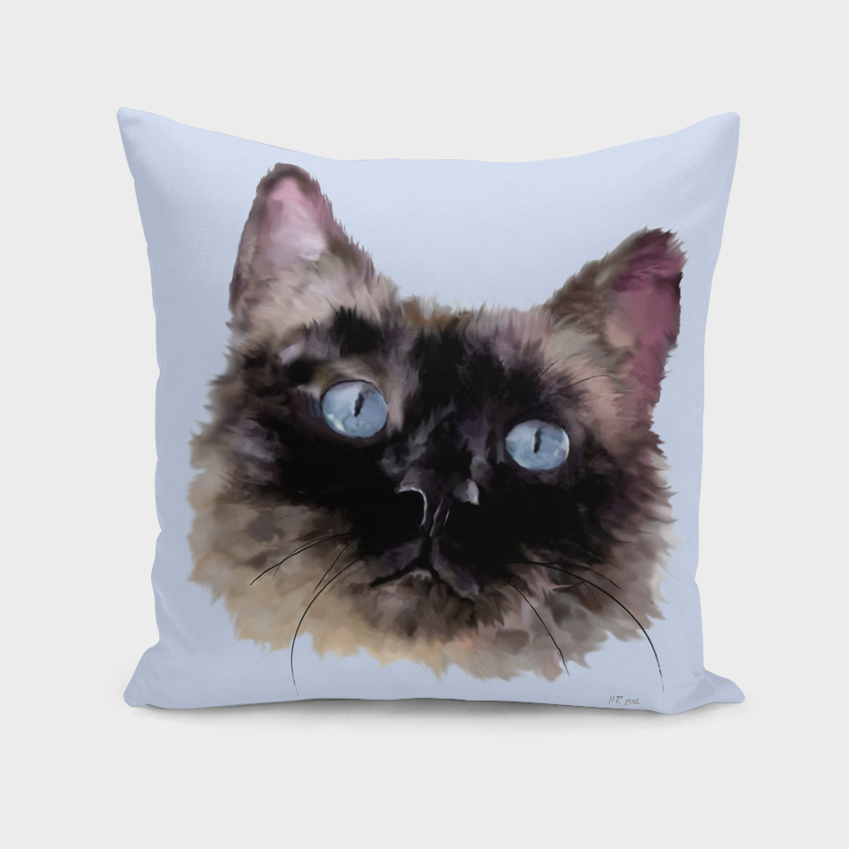 Jasper: Black, Blue-Eyed Cat