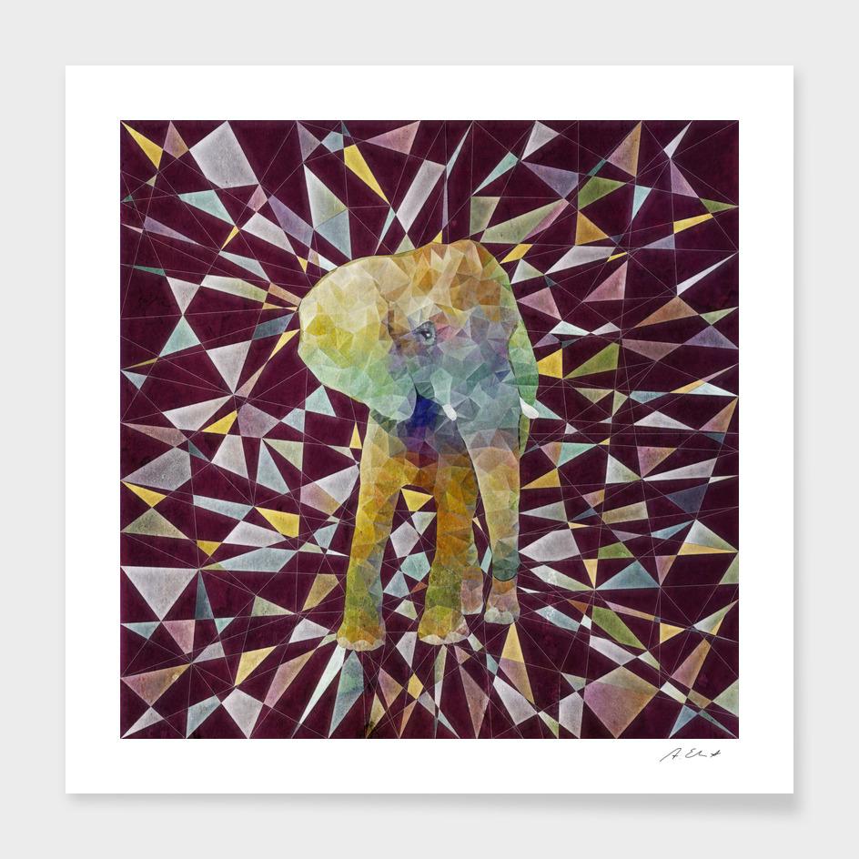 rainbow wlwphant