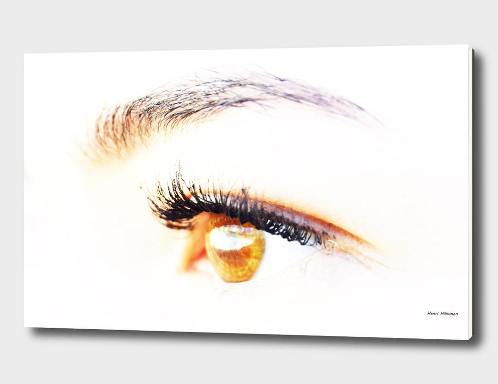 Eye Elin 1