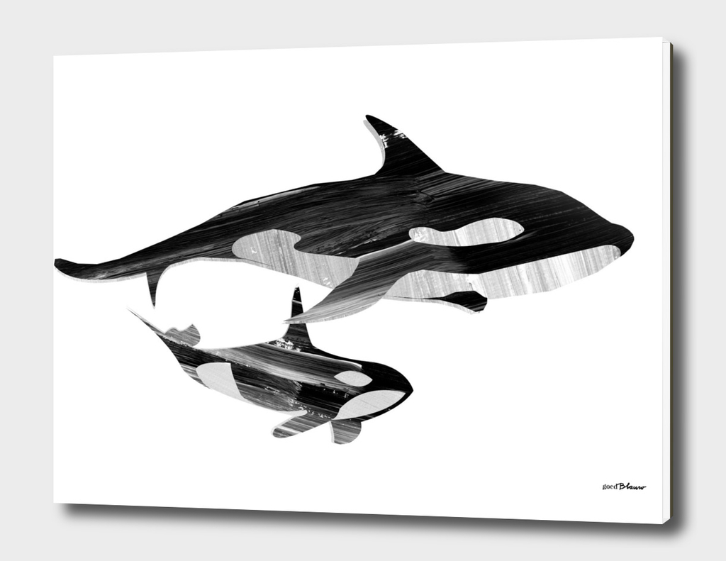 A Swim together (black and white)