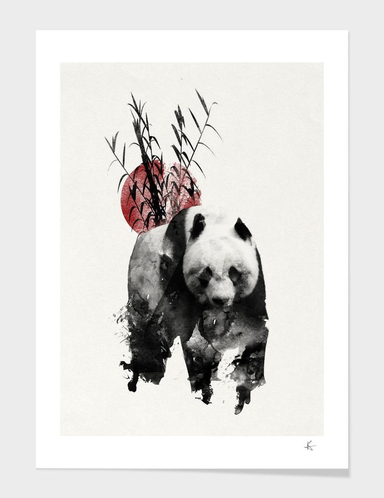 The Rising Sun Panda
