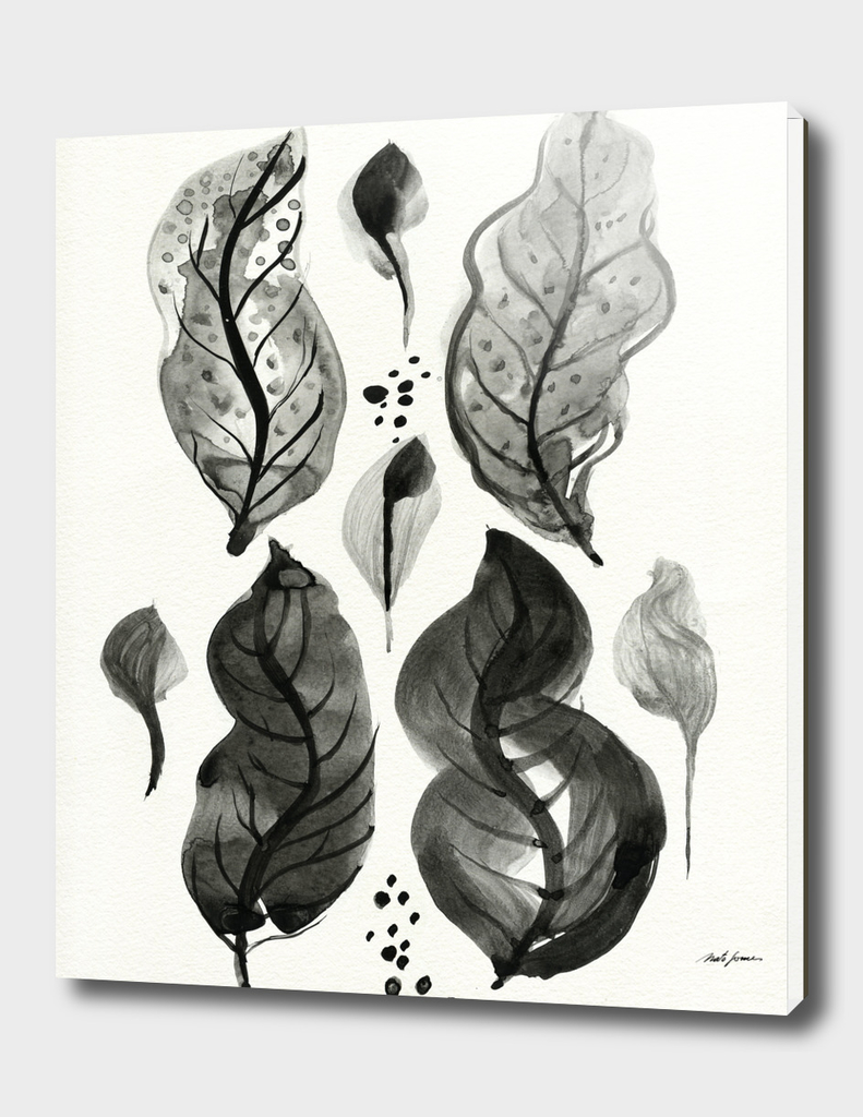 Compositions with leaves