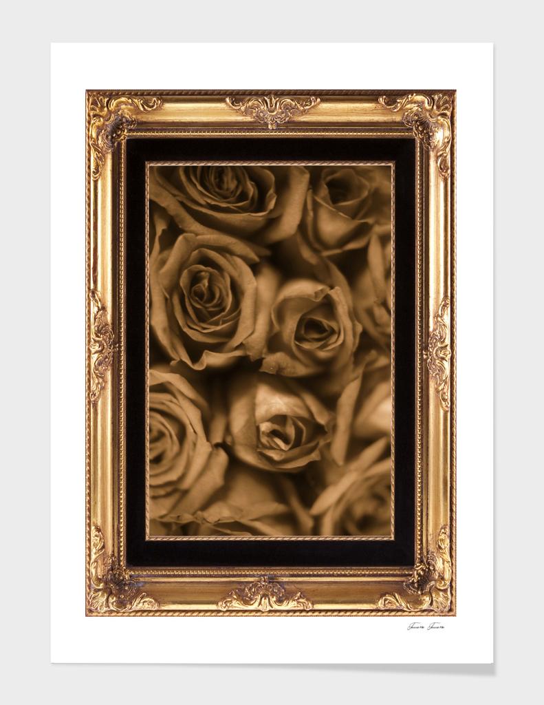 SEPIA ROSES FRAMED