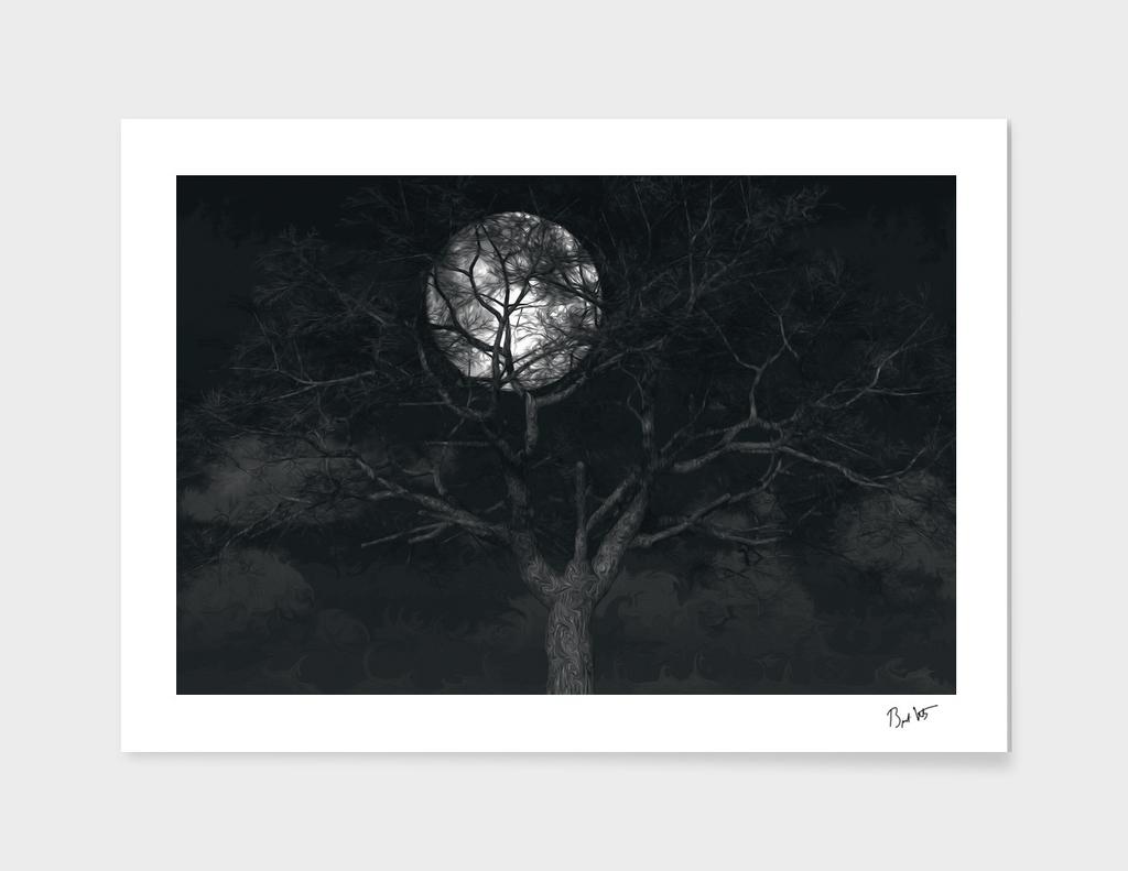 In The Pale Moonlight (Cloud series #13)