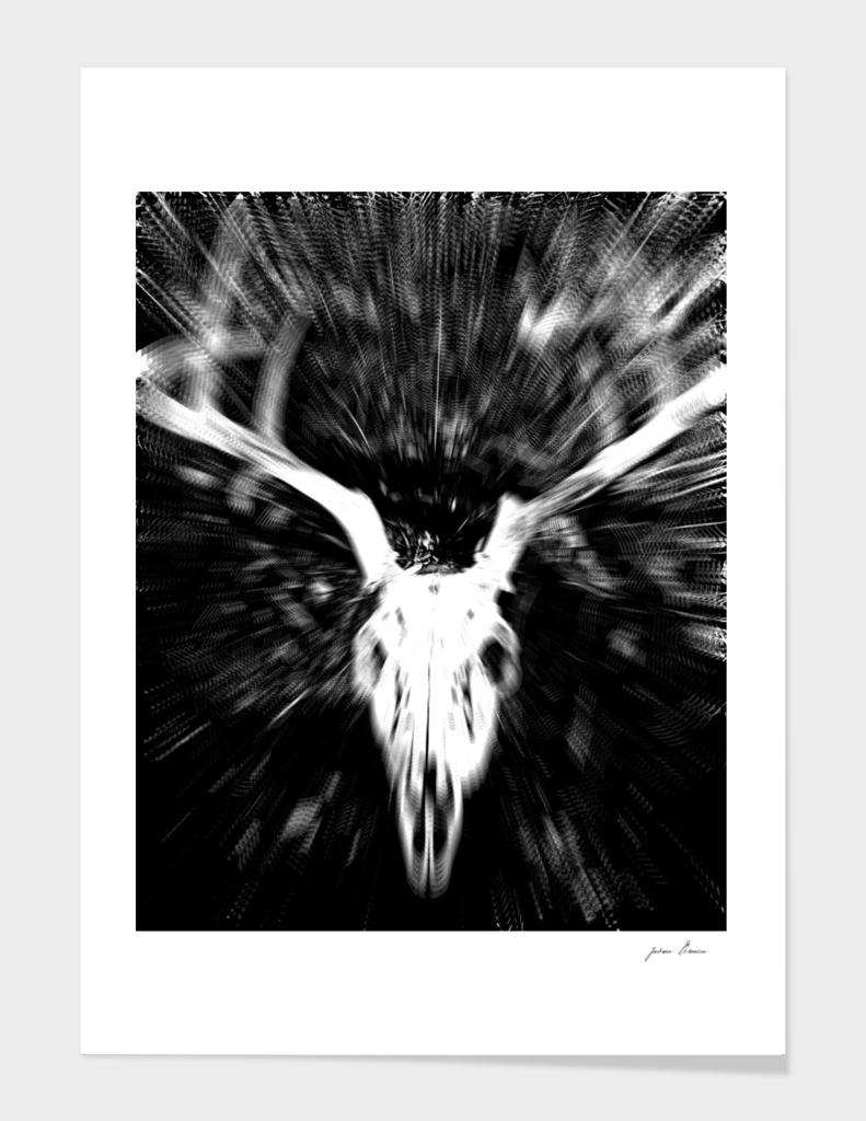 Deer Skull I
