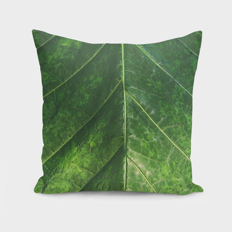 Botanical Gardens - Leaf #101