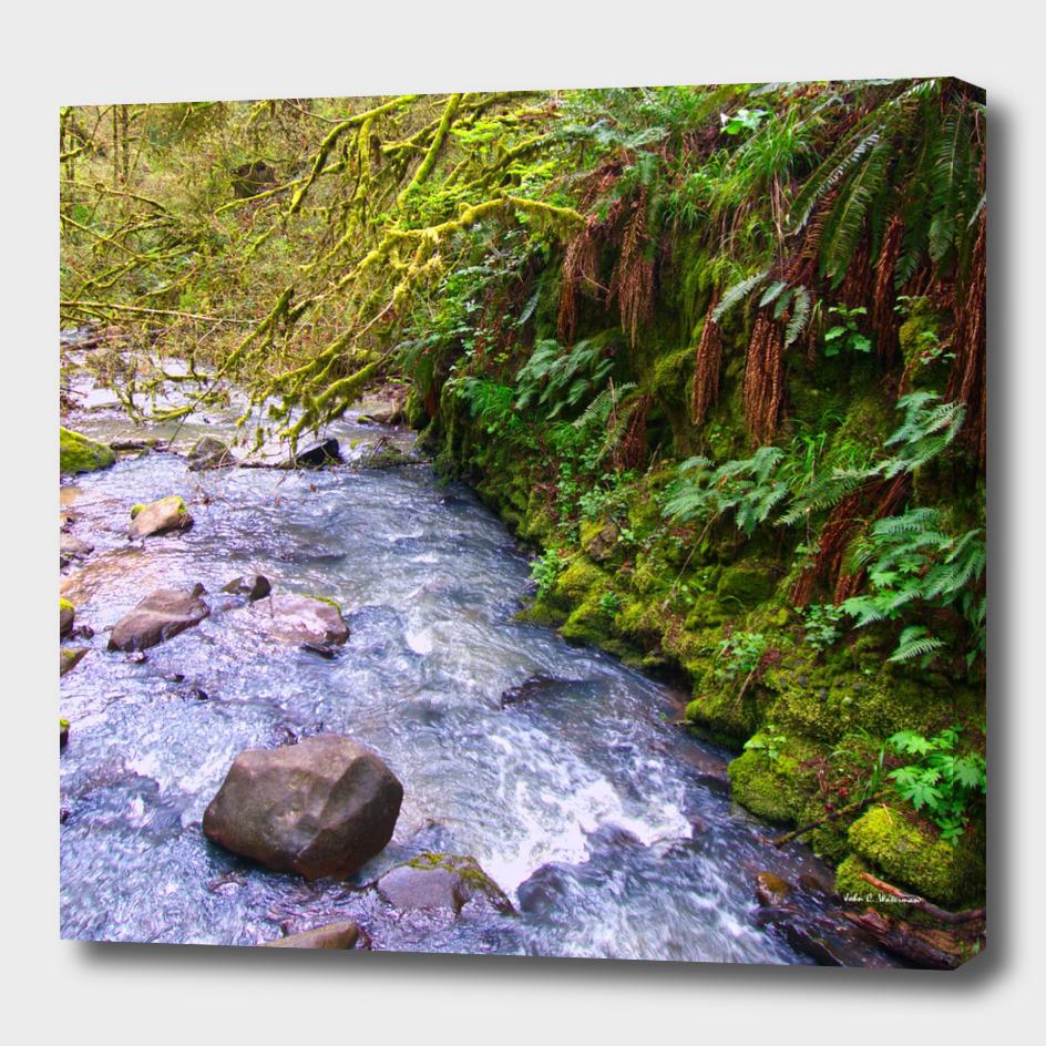 Macleary creek