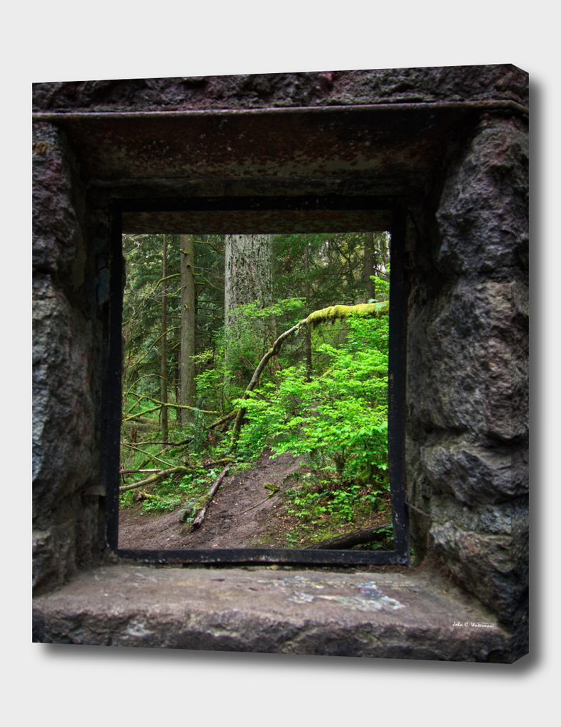 Window to the Pacific North West