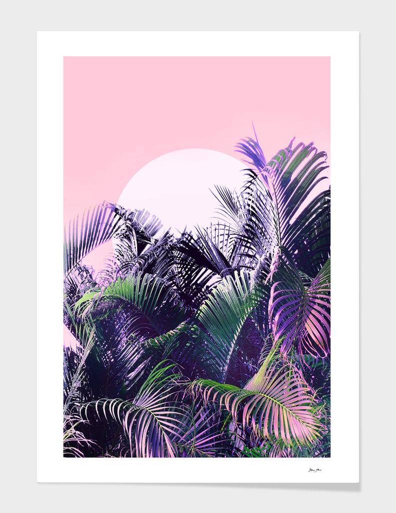 Jungle Sunrise -