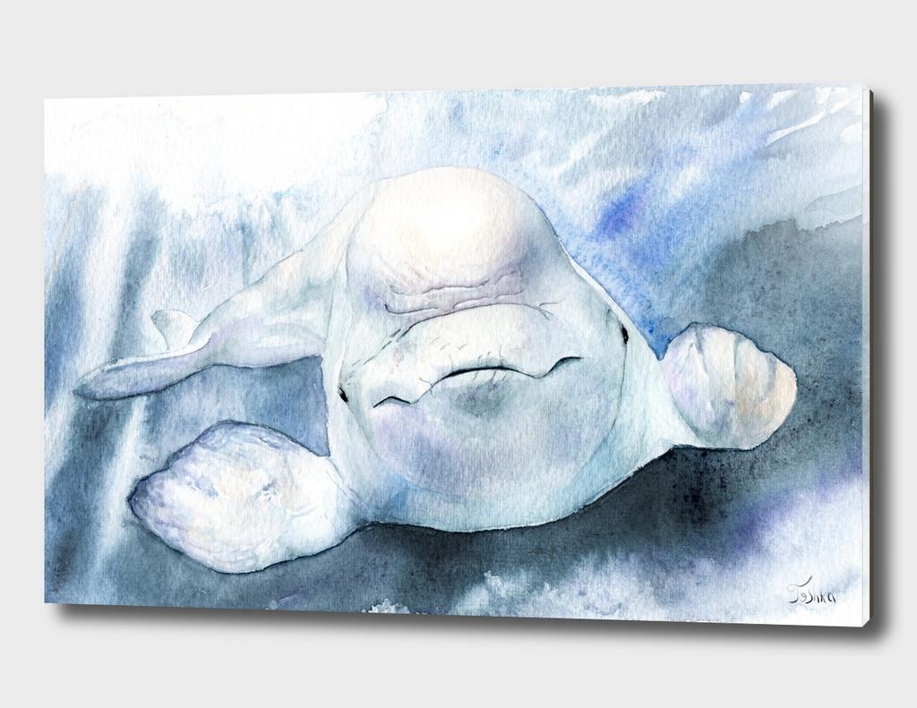 белуха Delphinapterus leucas with background