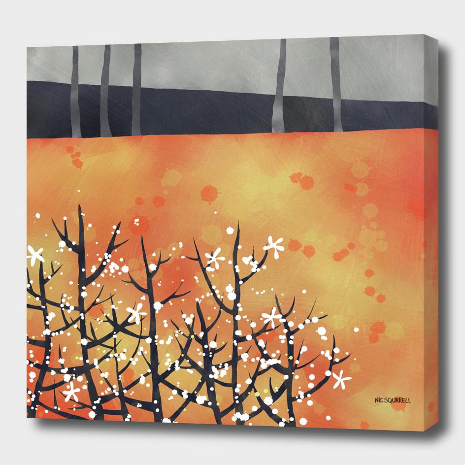 Blackthorn Blossom Landscape