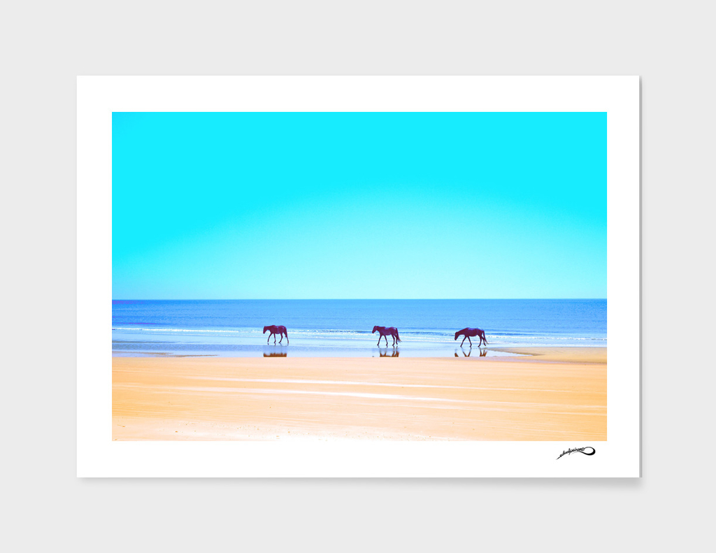 Sea of horses by #Bizzartino