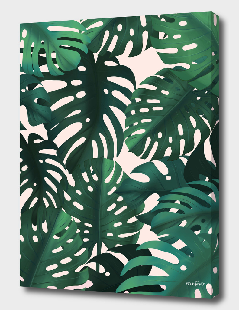 Tropical leaves on light background