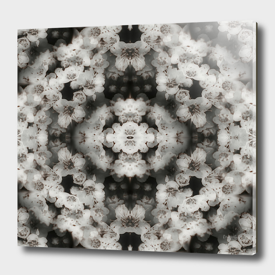 Flower mandala black and white