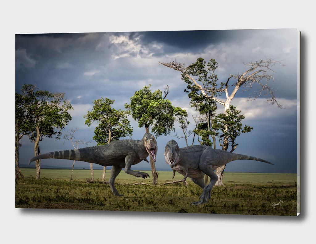 two tyrannosaurus