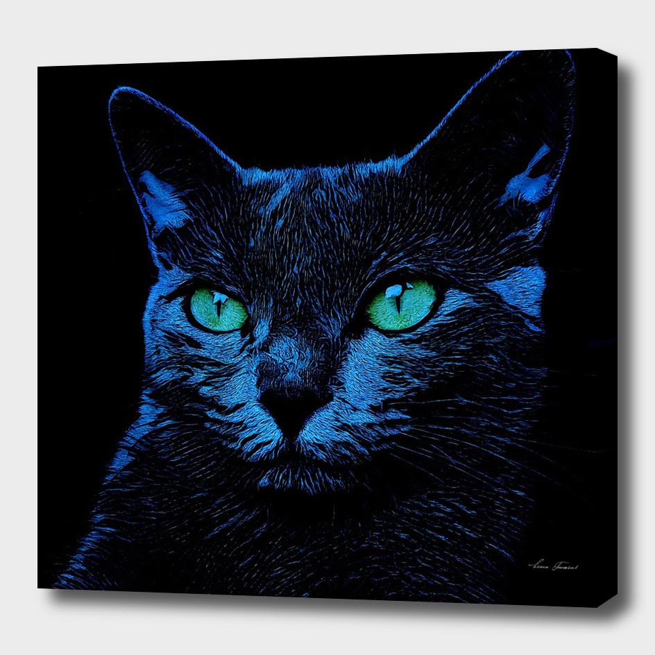 BLUE CAT ON BLACK