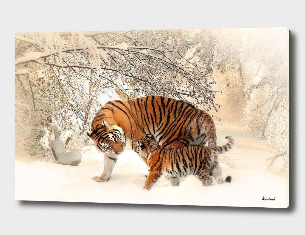 Tiger & Cub In Winter Scene Mural