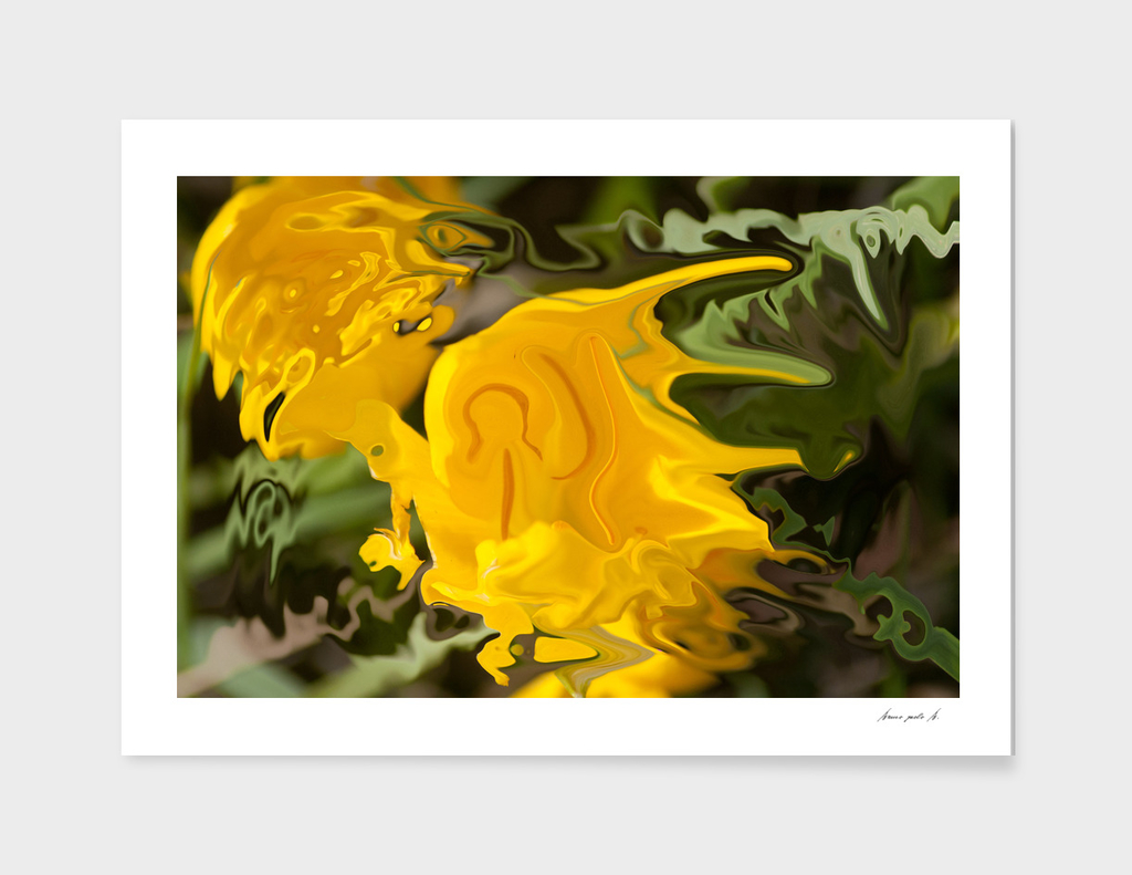 bright and yellow colors