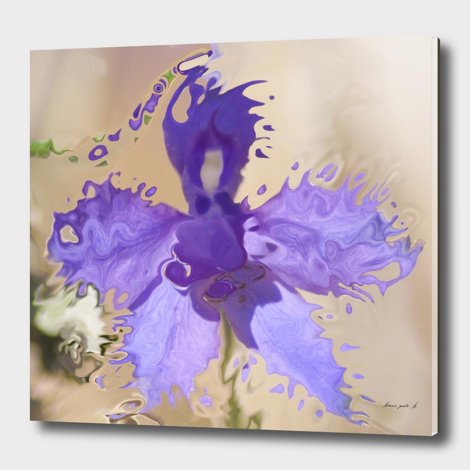 vanishing flower