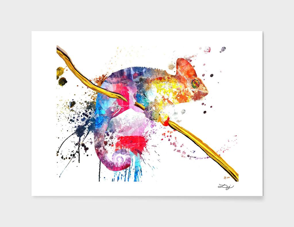 Chameleon Splash of Colors