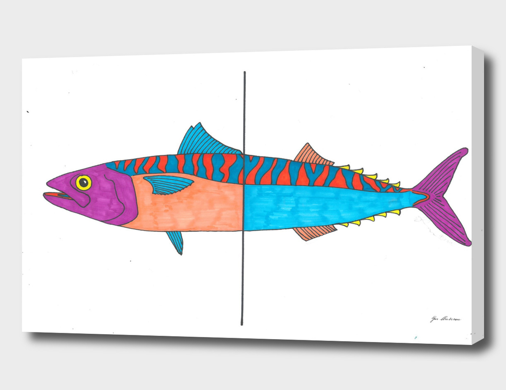 Psychedelic Mackerel fish