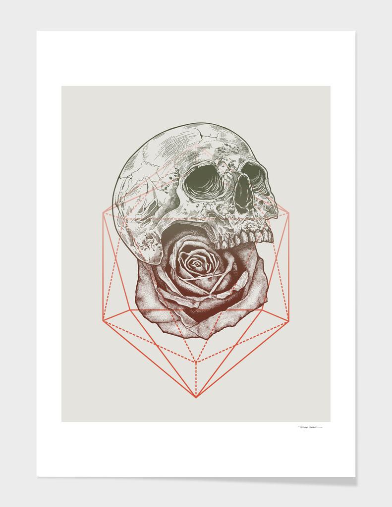 Skull Rose Geo