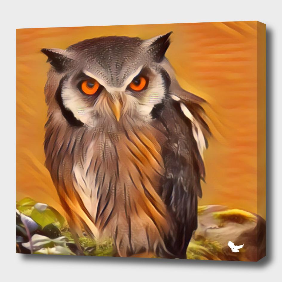 Owl in an orange night