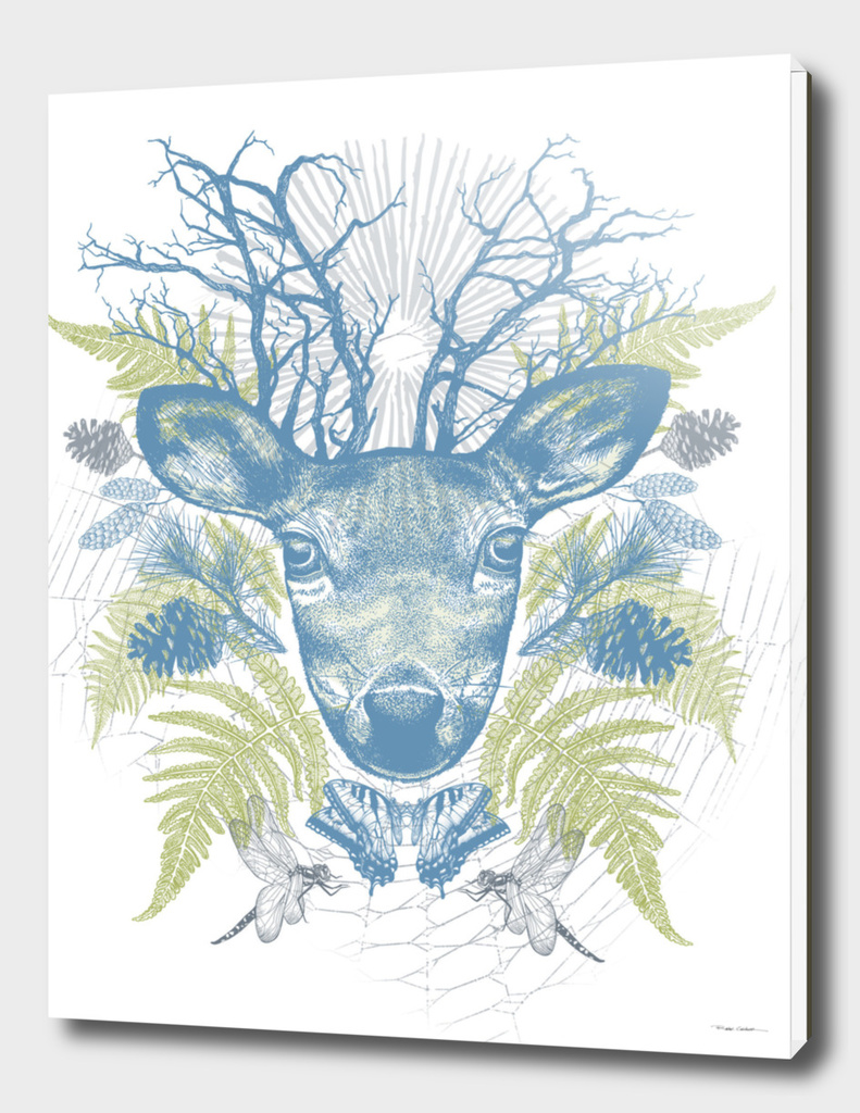 Adventure of the Deer